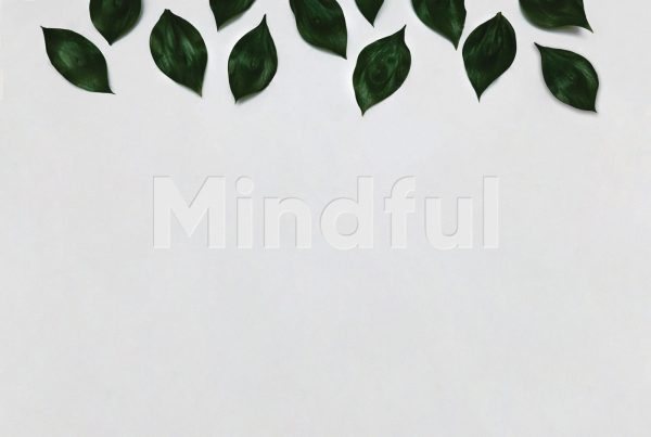 Mindful header corporate identity logo design
