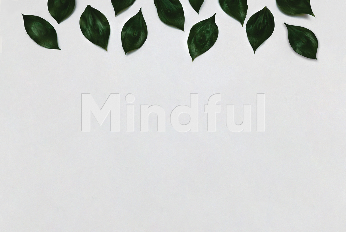 Mindful header corporate identity logo design